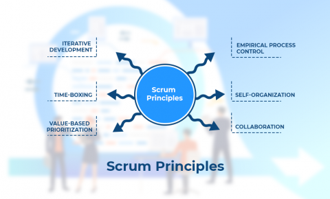 What are the 6 Scrum principles?