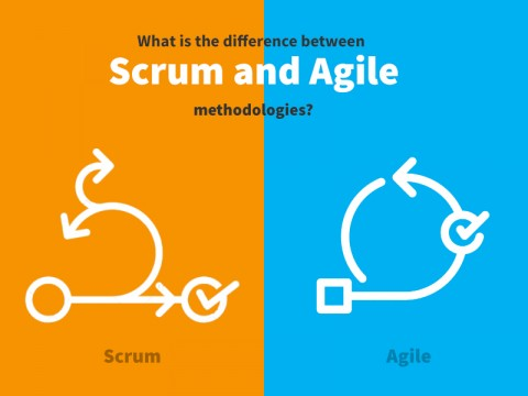 What is the difference between Scrum and Agile methodologies?