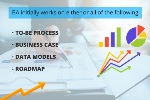 What is the Importance of a Business Analyst in a project